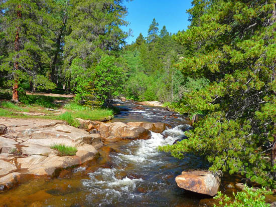 The Ceran St. Vrain Trail follows South St. Vrain Creek through a serene forest