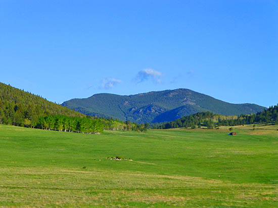 Elk Meadow Park