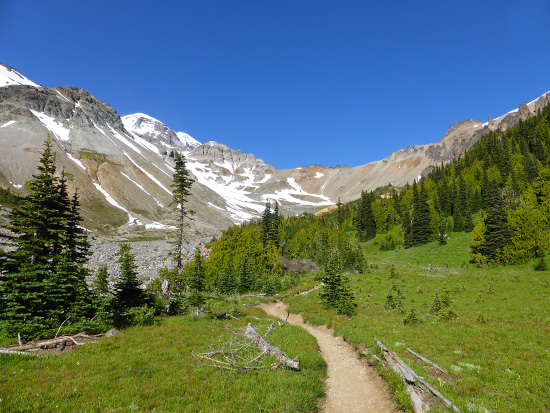 Heading through Glacier Basin to the base of Inter Glacier
