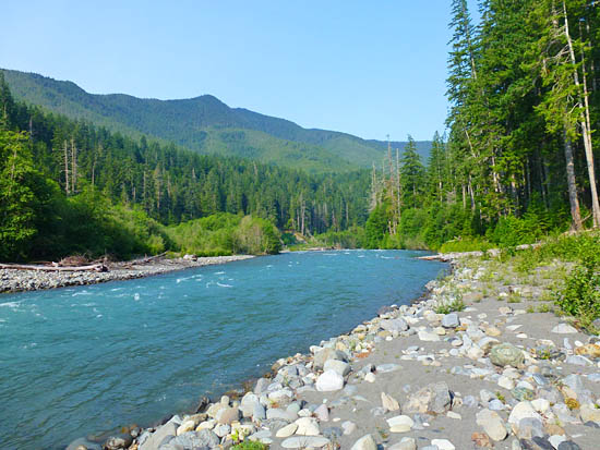 The Humes Ranch Loop follows the Elwha River to Goblin Gates